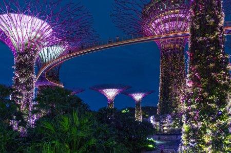 Banyan Tree Holdings откроет свой первый курорт в Сингапуре в районе Mandai